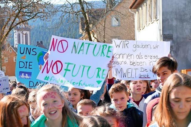 Der Hochschwarzwald ist zum Klimastreik aufgerufen