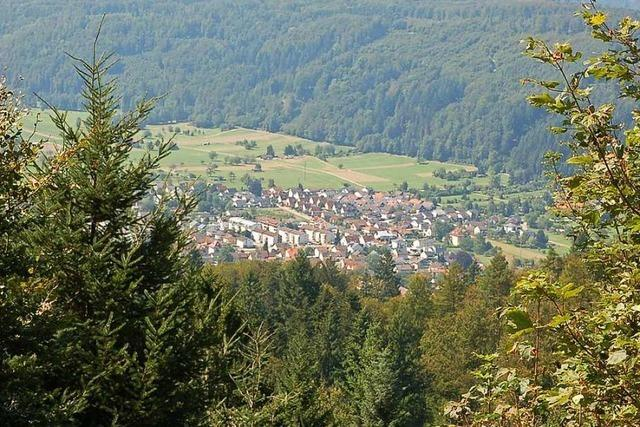 Hausen rechnet 2020 mit einem Gewinn im Wald