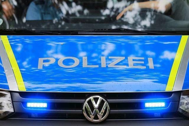 Polizei ertappt Einbrecher auf frischer Tat
