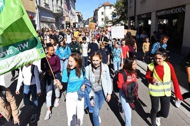 1500 Menschen kommen für den Klimastreik nach Lörrach