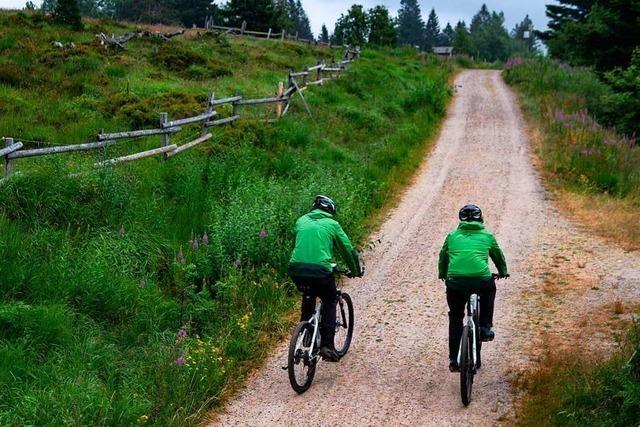 Fünf Radler pöbeln Ranger im Nationalpark Schwarzwald an