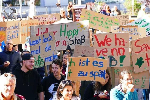 130 Menschen sind im Neustadt beim Klimastreik dabei