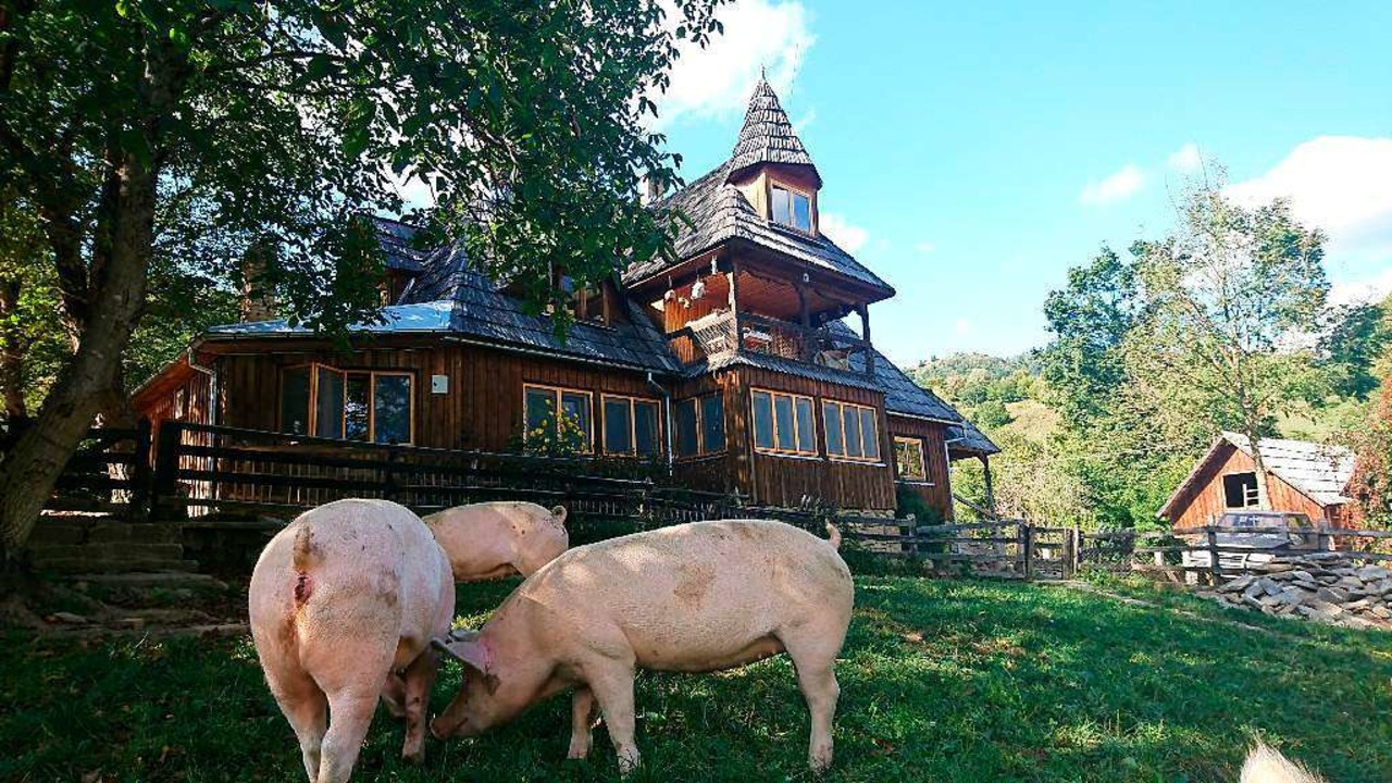 Idyllisch liegt das Haupthaus des Projekthofes in Maramures.  | Foto: - (dpa)