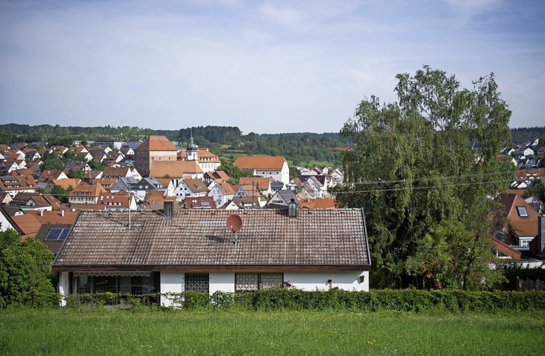 Die drei Birken (rechts) auf einem Grundstück in Heimsheim    Foto: Marijan Murat (dpa)