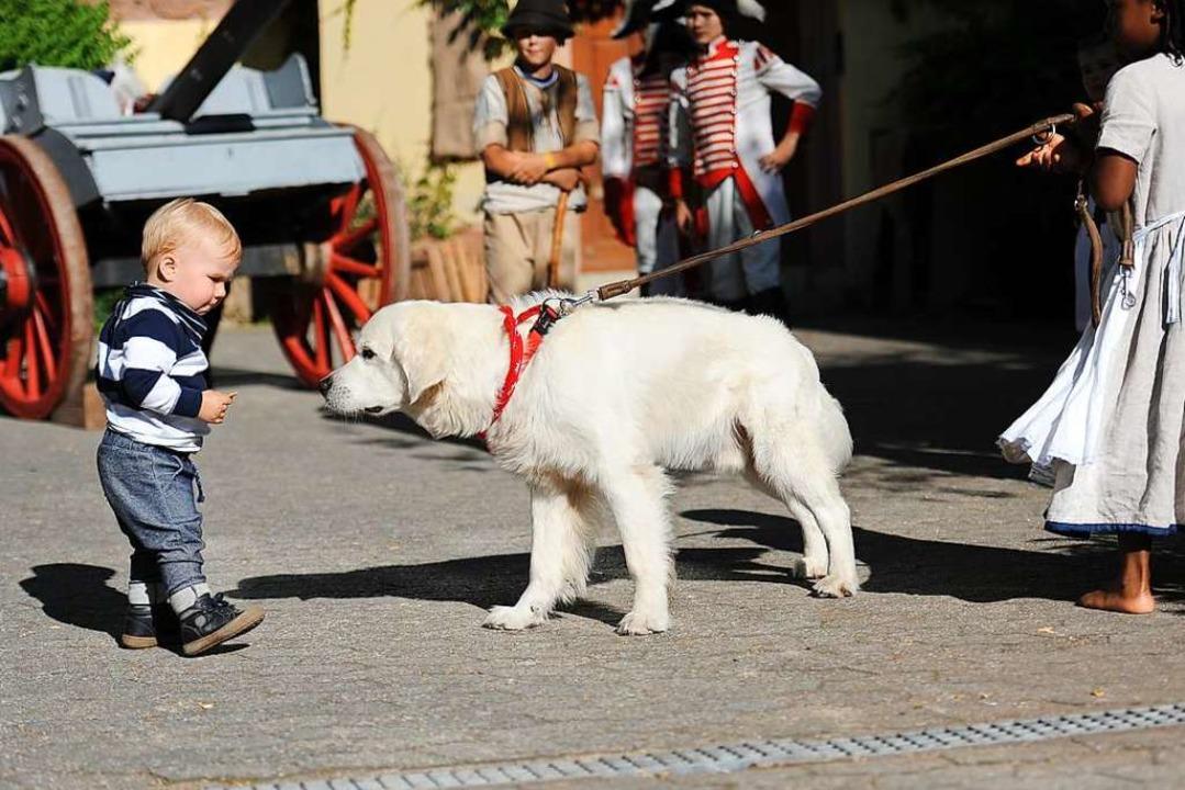 Kinder, Kinder:  Wenn ein Hund beim Kinderstück zum Schaf werden soll  | Foto: Hans-Peter Müller