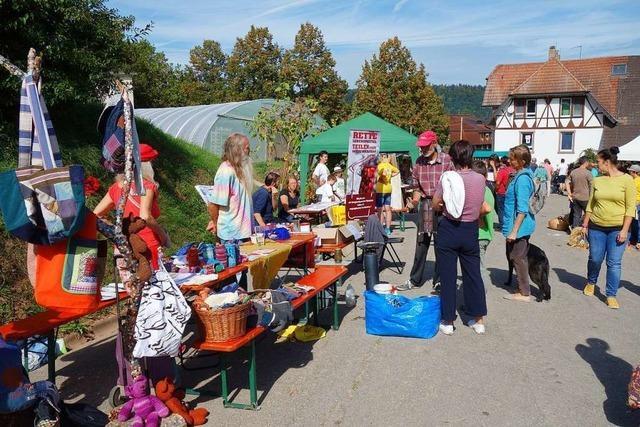 Der Hof Dinkelberg liefert Obst und Gemüse an mehr als 700 Haushalte