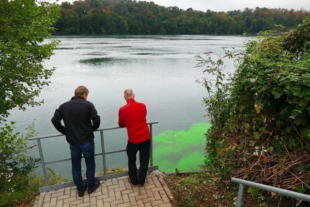 Für einen Versuch färbt sich der Rhein bei Rheinfelden grün