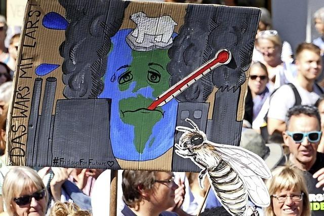 Klimanotstand geht nicht allen weit genug