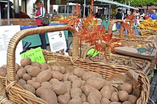 Kartoffelmarkt in Neuenburg