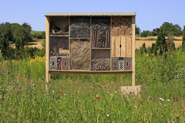 Insektenhotel bei Heiligenzell
