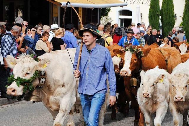Alemannische Woche in Oberried: