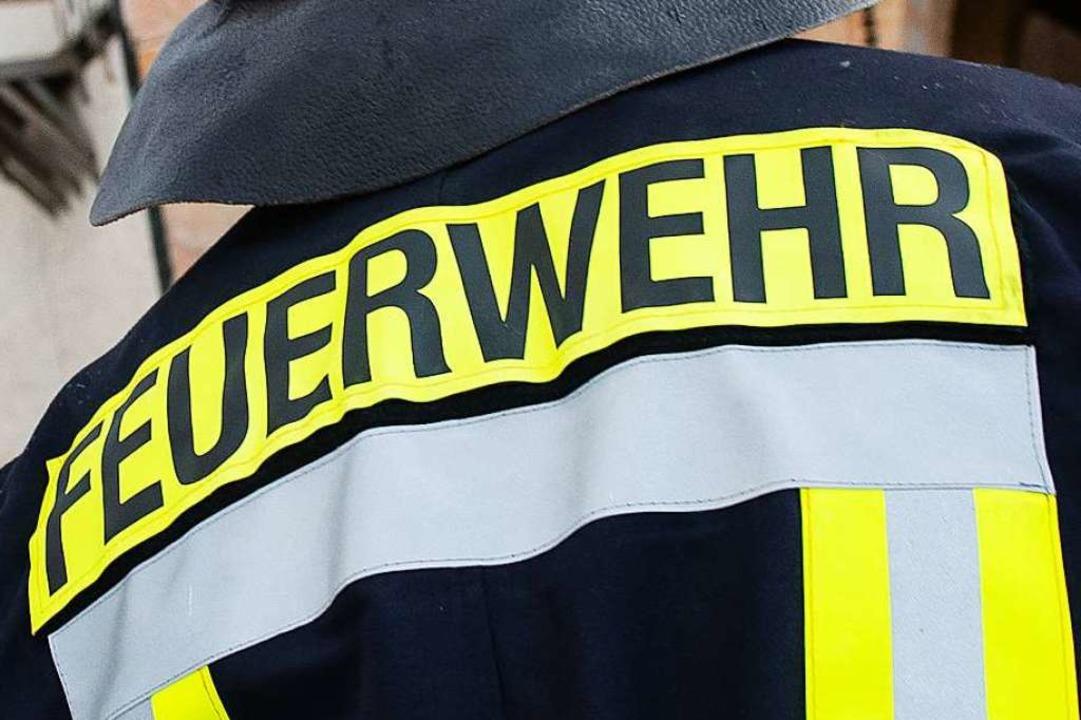 Die Hilfe der Feuerwehr war am Mittwoch nicht nötig.  | Foto: Swen Pförtner (dpa)