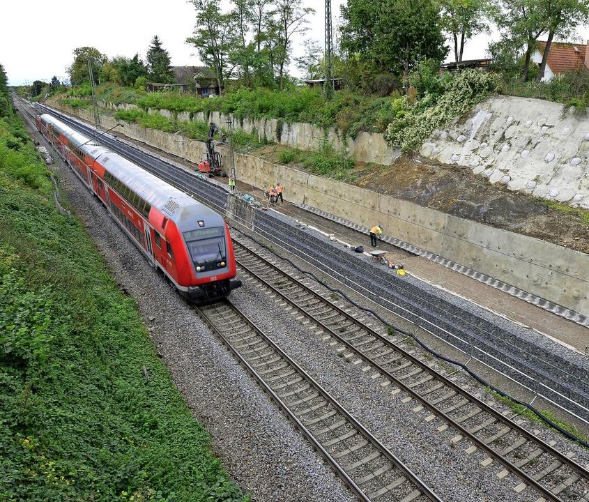 An der Nordseite des Bahndamms wird de...recke von rund 400 Metern gesichert.      Foto: Ingo Schneider