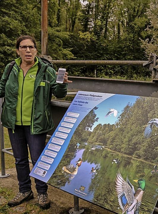 Bettina Saier, die Leiterin der Ökolog...aubergießen, vor einer neuen Infotafel  | Foto: Sandra Decoux-Kone