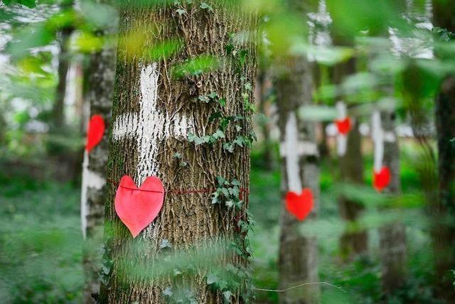 Die Symbolkraft der Bäume wurde unterschätzt