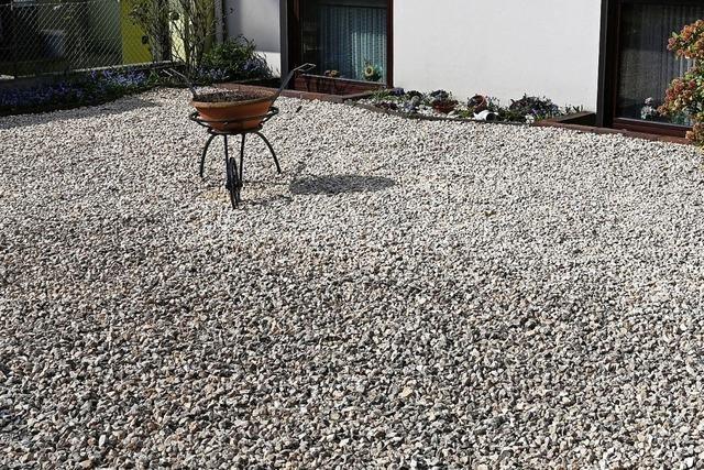 Lörracher Grüne wollen Schottergärten verbieten