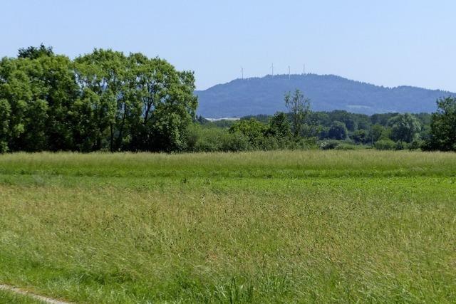 Holzhauser Ortschaftsrat lehnt Pläne für Gewerbegebiet Neufeld ab