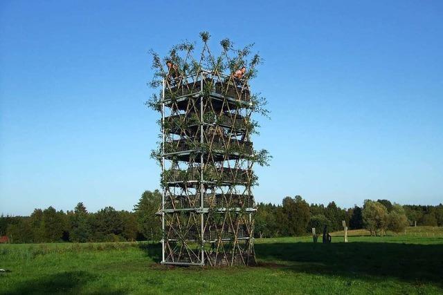 Können lebende Bäume tragende Elemente von Bauwerken sein?