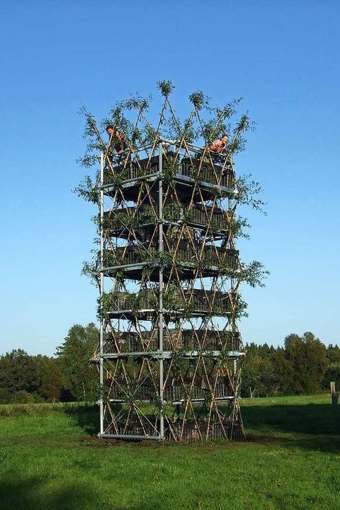 Der Baubotanik-Turm bei Pfullendorf na...r 2009 – damals noch mit Weiden.    Foto: Ferdiand Ludwig