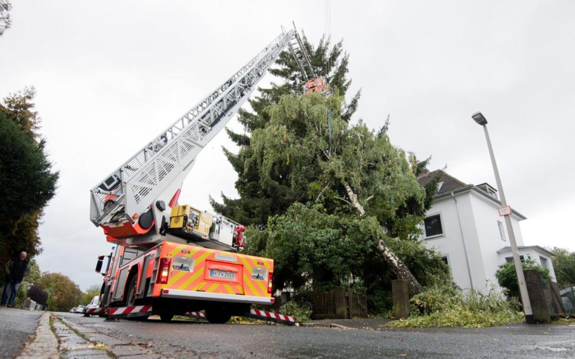 Umgestürzte Bäume in Niedersachsen beschäftigen die Feuerwehr  | Foto: Julian Stratenschulte (dpa)