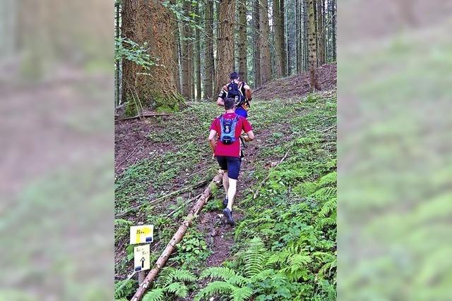 Geländelauf durch Schwarzwald pur