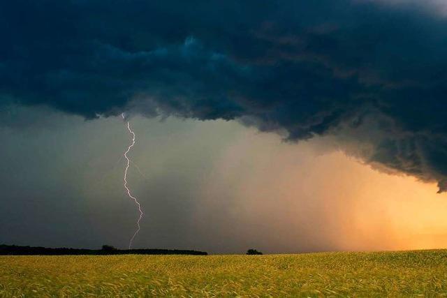 Grün-Schwarz will besseren Schutz für Landwirte gegen Wetterextreme