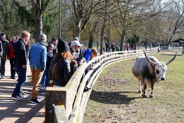 Der Freiburger Mundenhof wird größer – mit Millionen-Investitionen