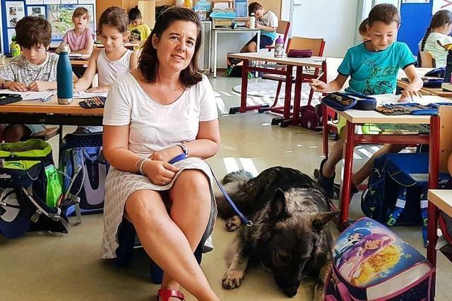 In Umkirch unterstützt ein Schulhund die Grundschüler beim Lesenlernen