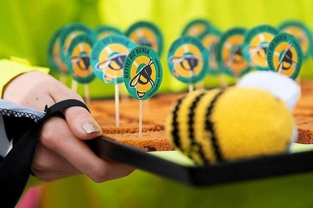 Wenn wir die Bienen retten wollen, müssen wir unseren Konsum ändern