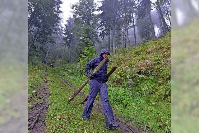 Bergwaldprojekt am Schauinsland