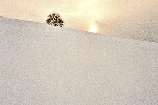 """""""Winterreise durch die südliche Baarlandschaft"""" von Hermann Sumser in Hüfingen"""