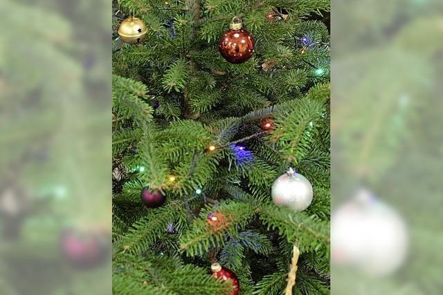 Weihnachten wird dieses Mal interaktiv