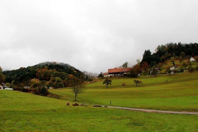 Ein Baugebiet in Malsburg-Marzell muss komplett neu geplant werden
