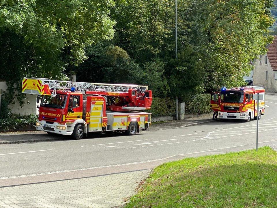 Es waren vier Fahrzeuge und 25 Mann vor Ort.  | Foto: Feuerwehr Bad Säckingen