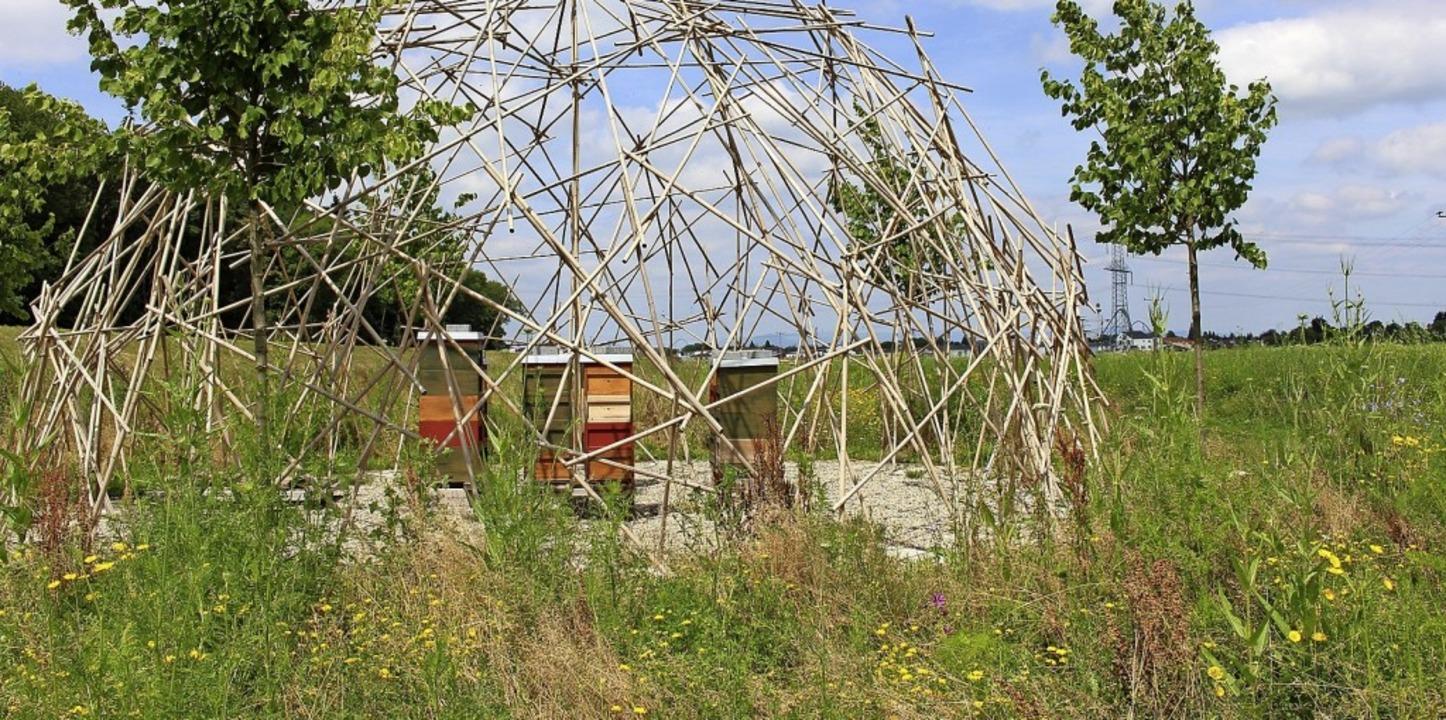 Der Bienenpavillon am südwestlichen Rand des Wasserpark-Areals.  | Foto: Europa-Park