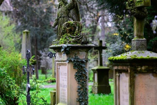 Großes Interesse an neuen Buch über den Alten Friedhof in Neuburg