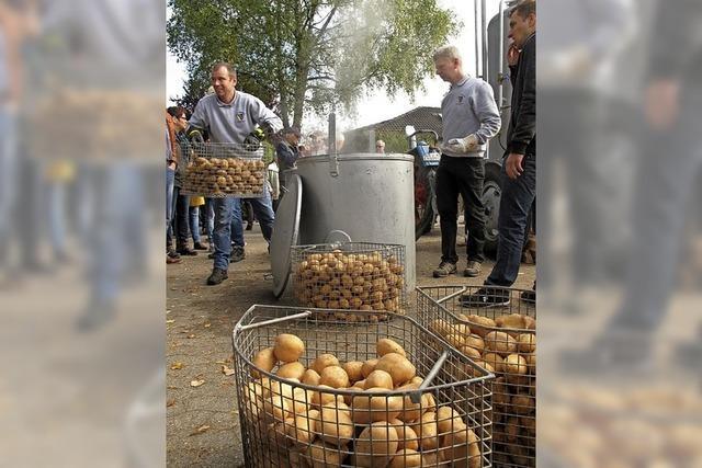 Kartoffel satt