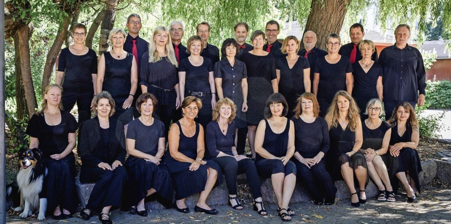 Zurzeit singen bei Temporal siebenundzwanzig Sängerinnen und Sänger.  | Foto: Veranstalter