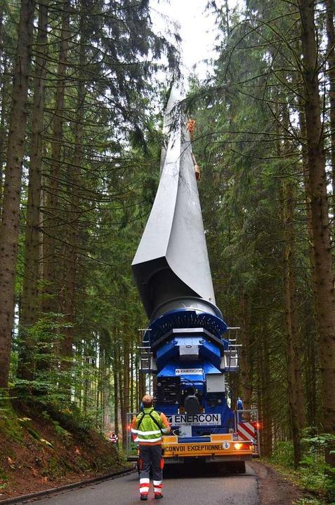 Durch den Wald.  | Foto: Nikolaus Bayer