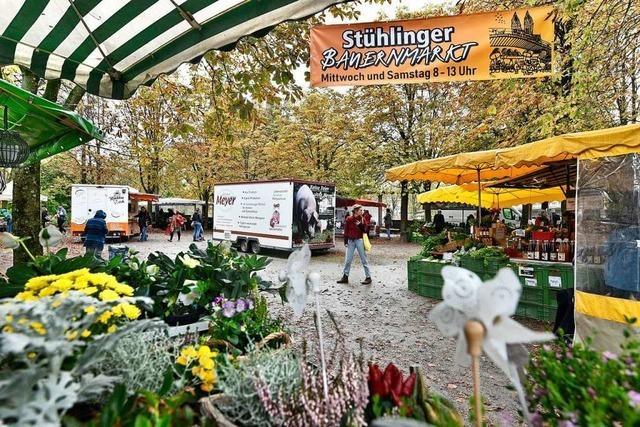 Der Stühlinger Markt ist auf den Bouleplatz umgezogen