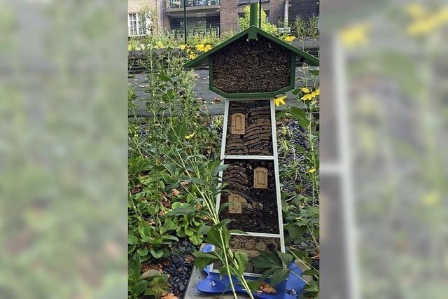 Ein Wasserturm für Insekten