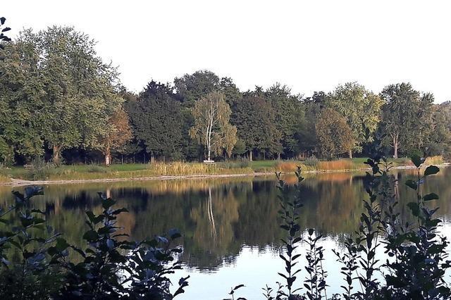Herbststimmung am Schutterner Baggersee