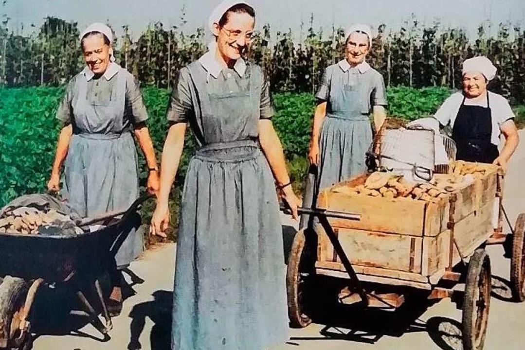 Schwestern bei der Kartoffelernte  | Foto: Jubiläumsbuch 175 Diakonissenhaus