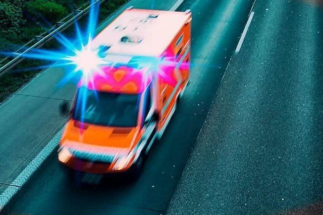 Autofahrer stirbt auf der A81 nach Zusammenstoß mit einem Felsbrocken
