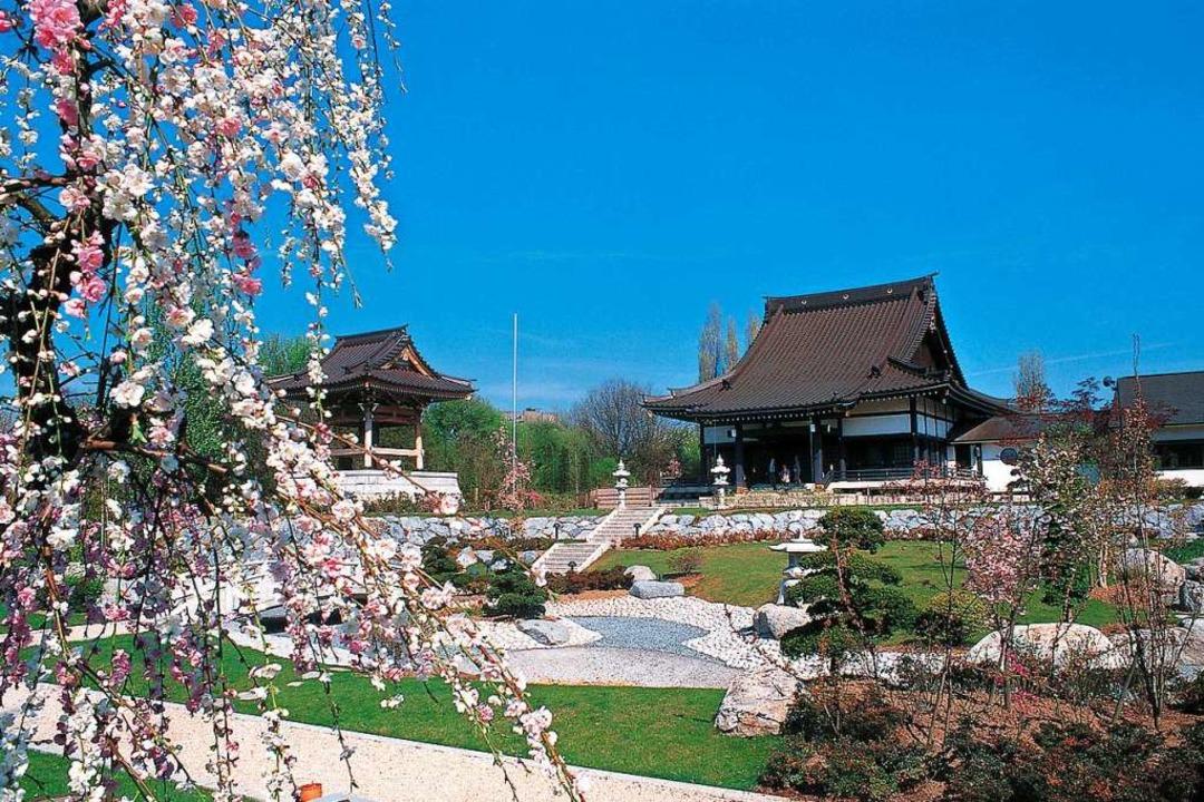 Einmalig in Europa: der japanische Tempel in Düsseldorf  | Foto: Düsseldorf Marketing & Tourismus GmbH