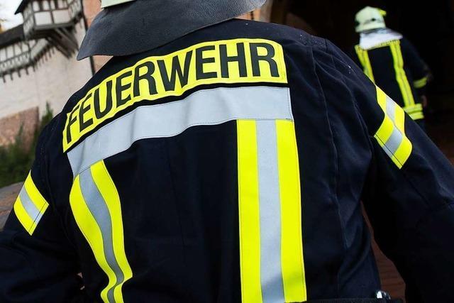 Sattelzug im Gewerbepark Breisgau fängt Feuer