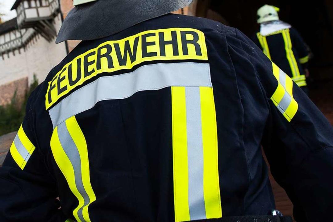 Die Feuerwehren aus Hartheim, Eschbach und Bad Krozingen waren im Einsatz.  | Foto: Swen Pförtner (dpa)