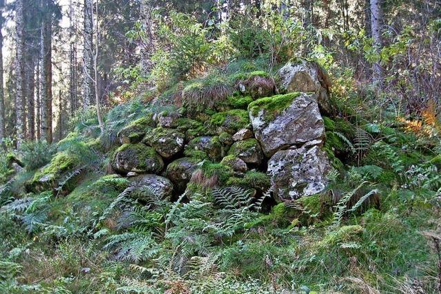 Auf den Spuren unserer Vorfahren im Südschwarzwald