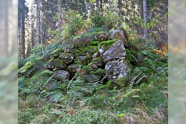 Heiko Wagner und Iso Himmelsbach referieren in Feldberg über Archäologische Forschungen im Südschwarzwald