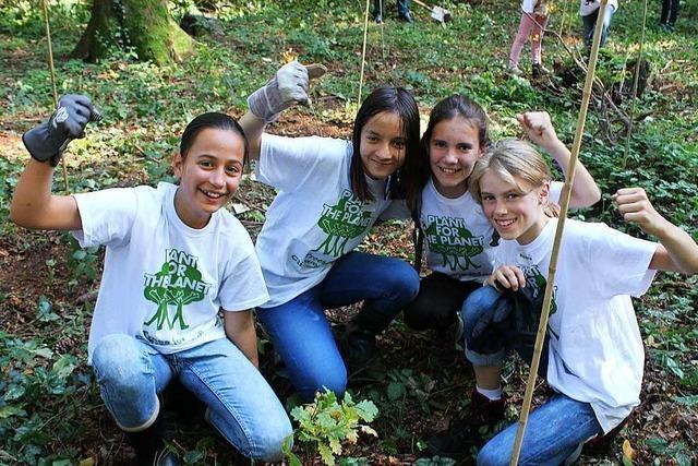 Schüler pflanzen 100 Bäume im Stegener Gemeindewald